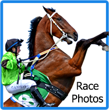 AtoZ-Visual Horse Race Photography